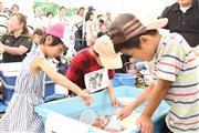 火の国長洲金魚祭り